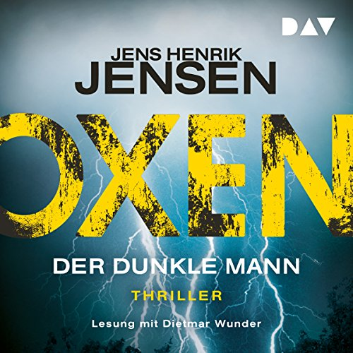 Der dunkle Mann audiobook cover art