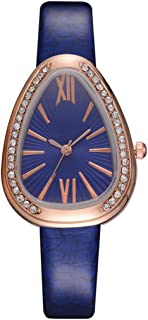 Snake Shape Women Watch Ladies Rome Scale Crystal Watches Female Dress Clock Blue