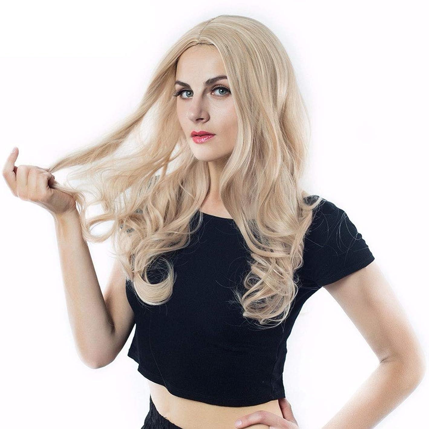 口径恵みツインYrattary ヨーロッパとアメリカの女性のかつらは、長い巻き毛の合成髪レースかつらロールプレイングかつらを強調表示します。 (色 : Photo Color, サイズ : 65cm)