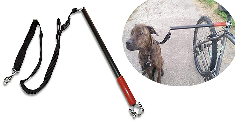 FidgetFidget Leash Red Hands Free Bicycle Dog Dog Bike Lead Dog Jogging Leash Safe with Clip