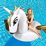 GOODS+GADGETS Aufblasbare Matratze Pegasus Luftmatratze Badeinsel fliegendes Pferd mit Flügeln Matratze Schwimminsel 250x250cm
