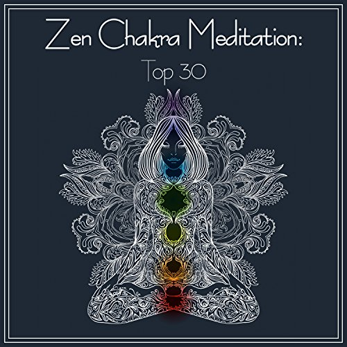 Zen New Age Sanxian Music