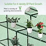 Vivosun 57x57x77-inch mini walk in green house with window and anchor plant garden hot house 2 tiers 8 shelves 12 multi-shelves, large space- crafted with 8 wired shelves, overall dimension:57x57x77-inch, our vivosun green house is large enough for starting seed, sprouting young plants, blooming flowers and cultivating fresh vegetables; 3 tiers and different height between each shelf provide a possibility to grow both small and large plants side by side roll-up entrance & windows- zippered roll-up entrance at the front provides an easily access to the greenhouse and a bigger operating space; 2 side windows bring a better air circulation of the green house, even if in hot weather, your lovely plants can breath fresh air; and the custom meshes on the window effectively isolate the pests from harming plants high-quality & long life time pe cover- our vivosun greenhouse is double-stranded edge banding, making the cover more tough and more durable; thanks to the anti-cold agent added in the cover, its lifetime is 3 months more than usual cover; in addition, our high-quality pe cover can prevent the harm from uv and bad weather but offering the best solar performance, which will nourish your plants very well
