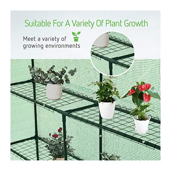 Vivosun 57x57x77-inch mini walk in green house with window and anchor plant garden hot house 2 tiers 8 shelves 5 multi-shelves, large space- crafted with 8 wired shelves, overall dimension:57x57x77-inch, our vivosun green house is large enough for starting seed, sprouting young plants, blooming flowers and cultivating fresh vegetables; 3 tiers and different height between each shelf provide a possibility to grow both small and large plants side by side roll-up entrance & windows- zippered roll-up entrance at the front provides an easily access to the greenhouse and a bigger operating space; 2 side windows bring a better air circulation of the green house, even if in hot weather, your lovely plants can breath fresh air; and the custom meshes on the window effectively isolate the pests from harming plants high-quality & long life time pe cover- our vivosun greenhouse is double-stranded edge banding, making the cover more tough and more durable; thanks to the anti-cold agent added in the cover, its lifetime is 3 months more than usual cover; in addition, our high-quality pe cover can prevent the harm from uv and bad weather but offering the best solar performance, which will nourish your plants very well