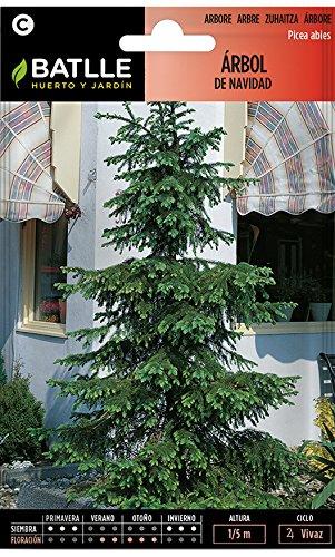 Semillas de Flores - Árbol de Navidad - Batlle