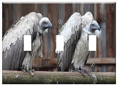 New Zealand Double Toggle Switch Tropical Bird 3dRose lsp/_75807/_2 Kea Alpine Parrot