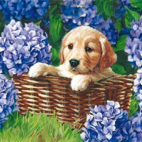 Ambiente servetten motief: Puppy - puppy in mand 20 servetten per verpakking