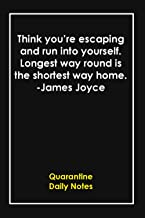 Think you're escaping and run into yourself. Longest way round is the shortest way home. -James Joyce: Quarantine Memories...