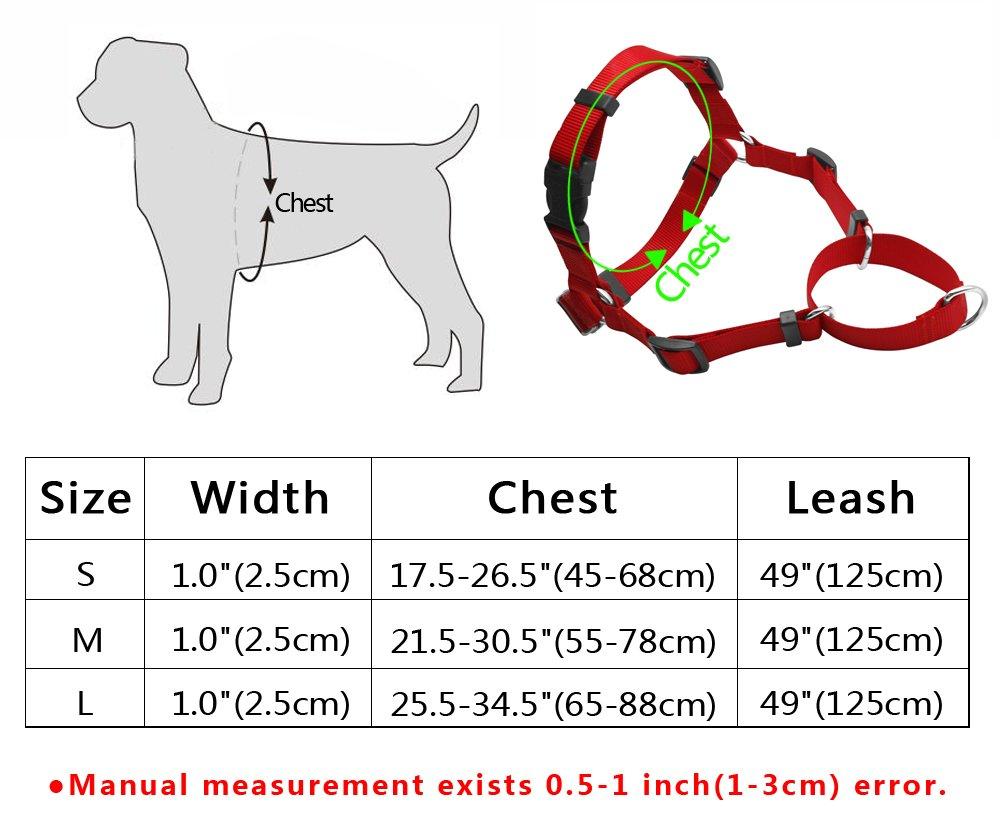 escaladas y senderismo entrenamientos Set de correa y arn/és para perro Berry no-pull de nailon para facilitar los paseos