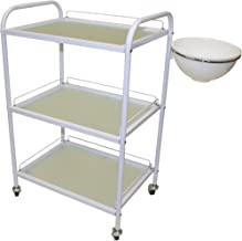 esthetician cart with bowl