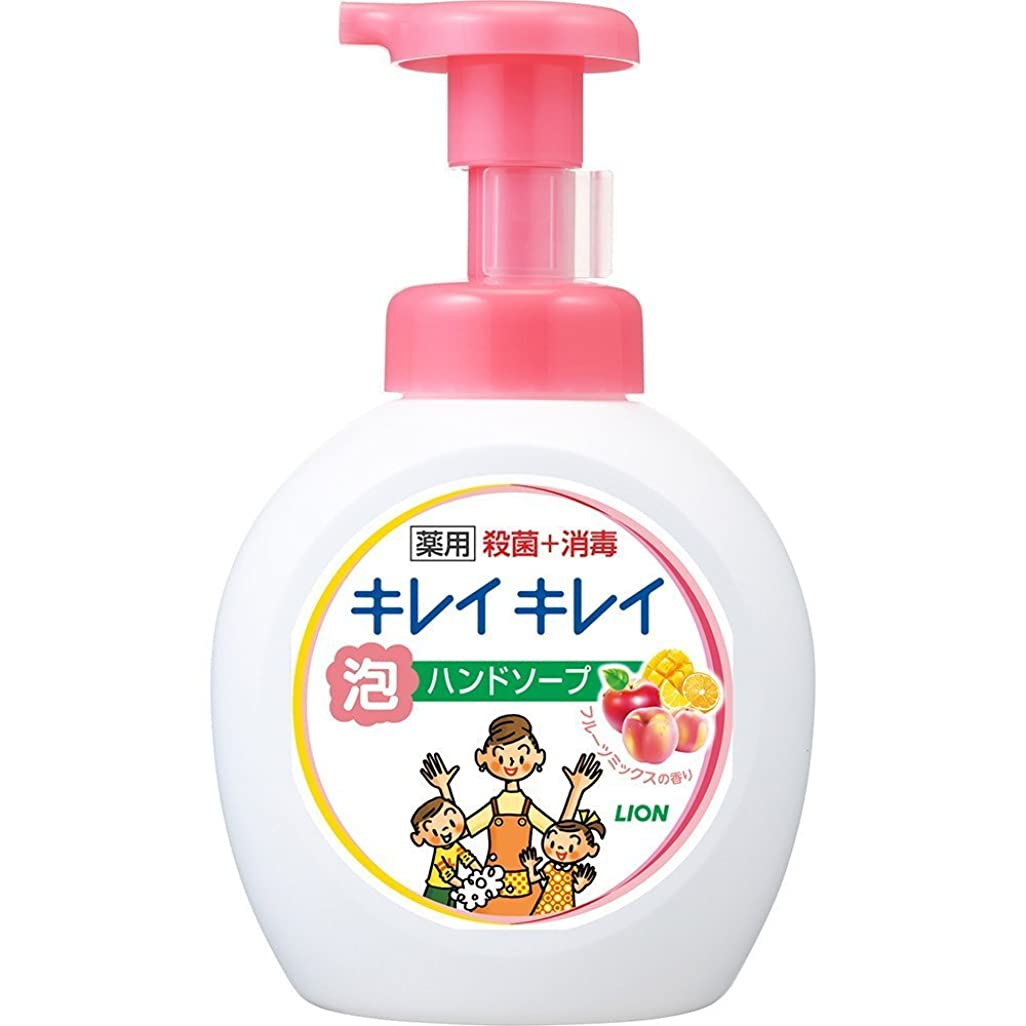 脇に分離一方、キレイキレイ 薬用 泡ハンドソープ フルーツミックスの香り 本体ポンプ 大型サイズ 500ml(医薬部外品)