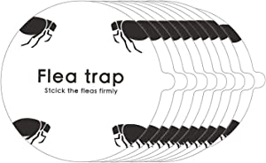 Flea Trap Refills 10 Packs, Sticky Dome Glue Board Replacement Pads, Non-Toxic, 8.2 Inch Natural Glue Discs Refills