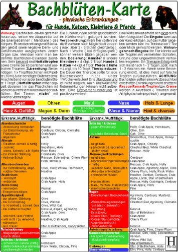 Bachblüten-Karte für Hunde, Katzen, Kleintiere & Pferde - physische Erkrankungen (2005-01-01)