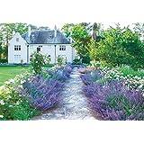 300ピースジグソーパズル 世界の美しい庭園 ライラック ブルー ガーデン(26x38cm)
