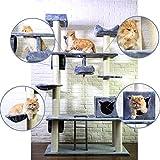 ziigo Kratzbaum XXL Katzenbaum große Katzen Katzenkratzbaum mehrere Katzen 205 cm deckenhoch Kratzmöbel Natursisal stabile Kletterbaum mit massiven Stämme grau