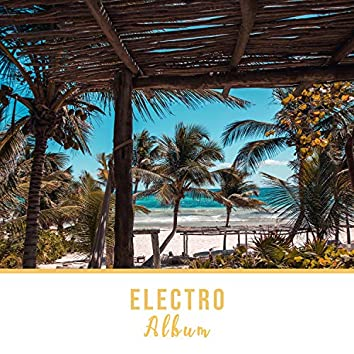 2020 Electro Drinking Album