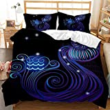 Juego de ropa de cama y funda de almohada 3D, diseño de constelaciones, efecto de impresión – ligero juego de ropa de cama de microfibra tamaño individual doble King (Acuario, 220 x 240 cm)