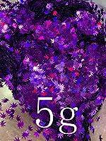 緑色のカエデの葉のスパンコールの爪アートグリッター薄いフレークステッカークリスマスマニキュアの装飾手仕事の工芸品DIY huangxiuquan (Color : Purple 5g)