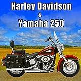 Yamaha 250cc Motorcycle Starts, Idles & Pulls Away Slowly, From Rear, Yamaha Motorcycles & Scooters