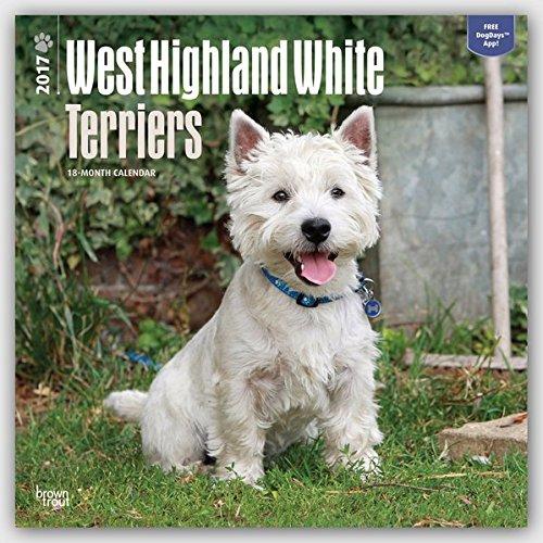 West Highland White Terriers - Westies 2017 - 18-Monatskalender mit freier DogDays-App: Original Bro