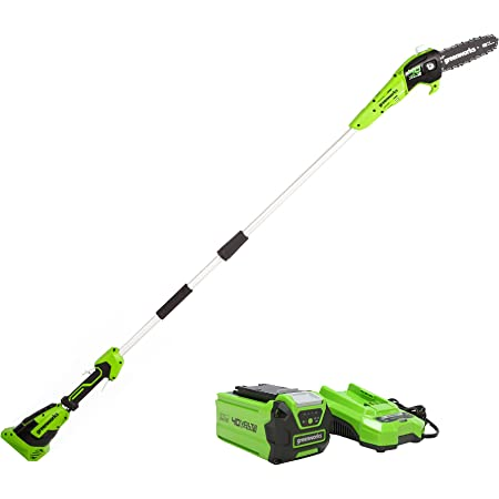 Greenworks 40V 8-Inch Cordless Polesaw, 2.0Ah Battery and Charger Included PS40B210