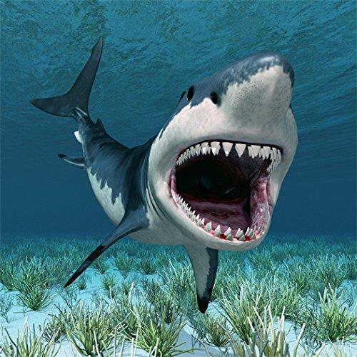 YongFoto 2x2m foto achtergrond onderwaterwereld aquarium witte haai 3D groen gras oceaan zee karikatuur alles goed voor verjaardag fotografie achtergrond foto party kinderen bruiloft fotostudio