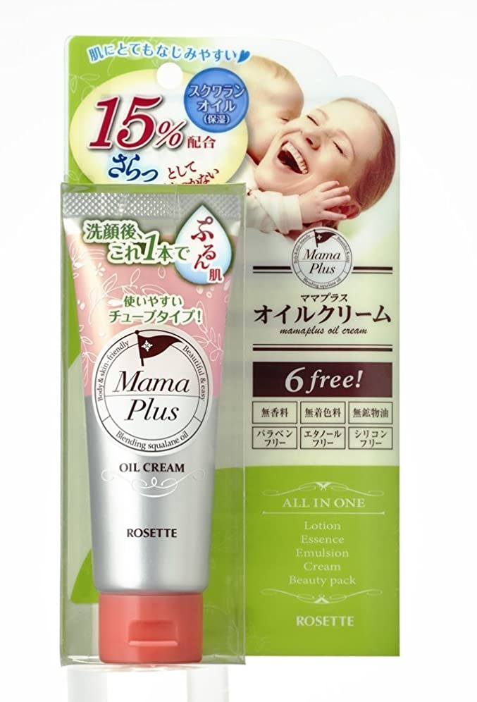 関係する耐えられない靄ロゼット ロゼット洗顔パスタ 普通肌 90g