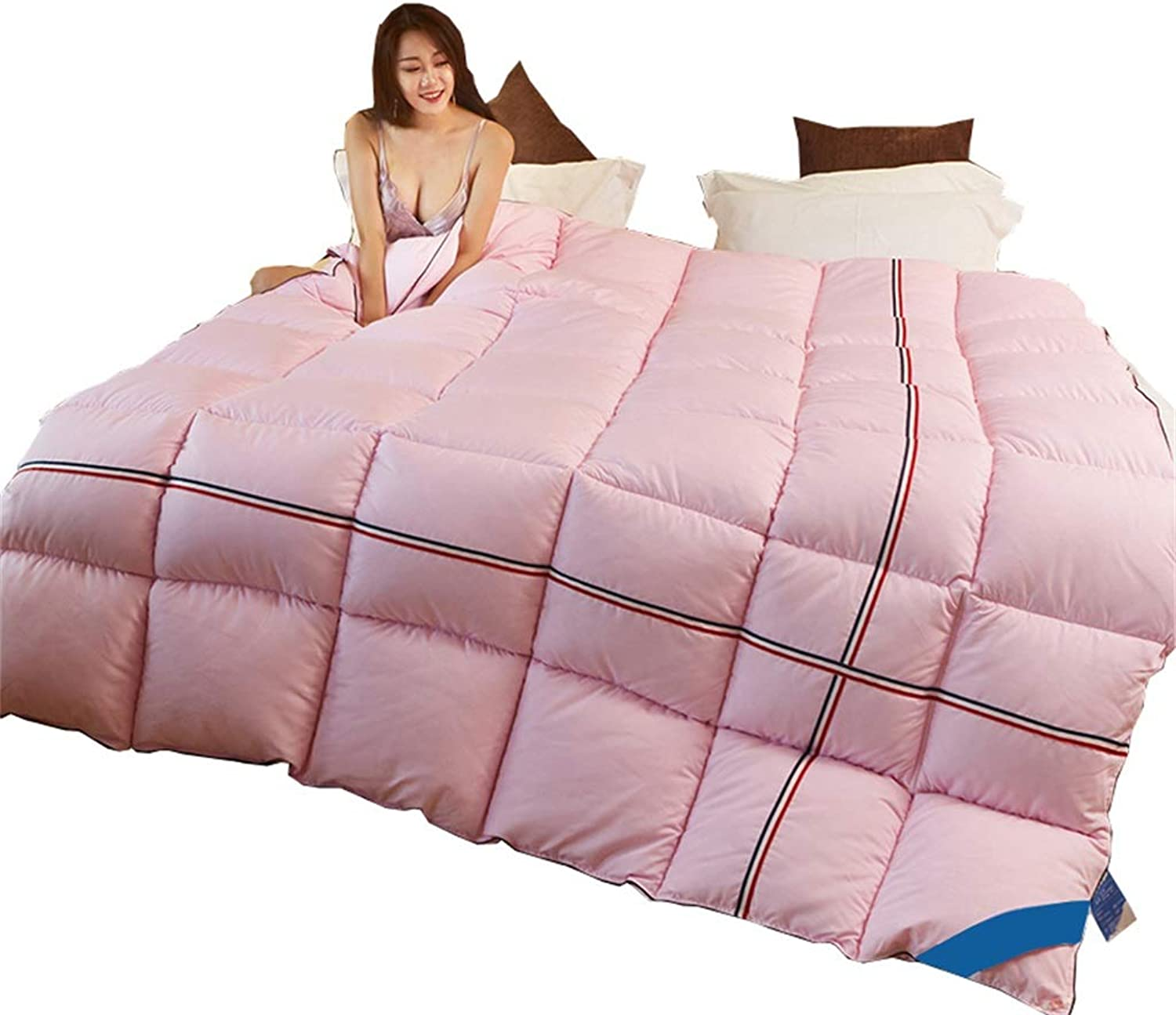 Pink Quilt Thicken Warm Soft Seasons Double All-Season Quilted Comforte Rhypoallergenic Quilted Comforter Corner Tabs (Size   180cmx220cm3kg)