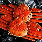 極上ズワイガニ 天然ボイル 北海道発送 ずわい蟹 姿 2尾セット 約1.2kg