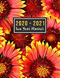 2020-2021 Two Year Planner: 2020-2021 monthly planner full size | Jan 2020 - Dec 2021 | 24 Months Agenda Planner with Holiday | Personal Appointment ( ... Design (2 year monthly planner 2020-2021)