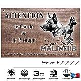 pets-easy.com malinois-02 - cartello deterrente intrusi (lingua francese), con immagine di pastore belga malinois 20 x 10 cm
