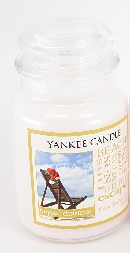 でる彫る従事するYankee Candle Large Tropical Christmas Jar Candle (Christmas at the beach)