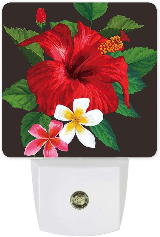 LED Max 58% OFF Plug-in Night Light Auto Dusk Blossom to specialty shop Dawn Decor F Sensor