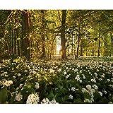 decomonkey Fototapete selbstklebend Wald Natur 343x256 cm XXL Selbstklebende Tapeten Wand Fototapeten Tapete Wandtapete klebend Klebefolie Blumen