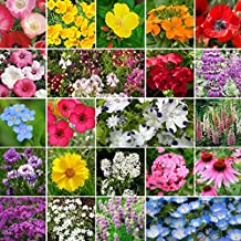 Partial Shade Wildflower Seed Mix - 1 Pound, Mixed