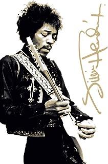 Studio B Jimi Hendrix Guitar Gold Signature Music Cool Wall Decor Art Print Poster 24x36