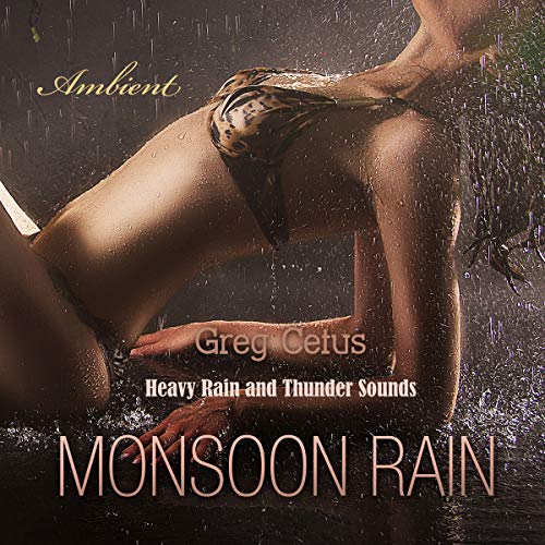 Monsoon Rain audiobook cover art