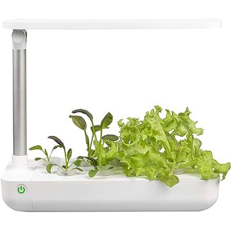 VegeBox Cultivo Hidropónico Interior Table | 9 Hoyos de plantación | Iluminación Inteligente con Temporizador | Cultiva Tus propias Hierbas, Vegetales etc. en tu casa ¡Todo el año! (Blanco)