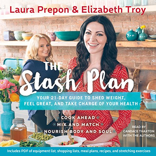 The Stash Plan audiobook cover art