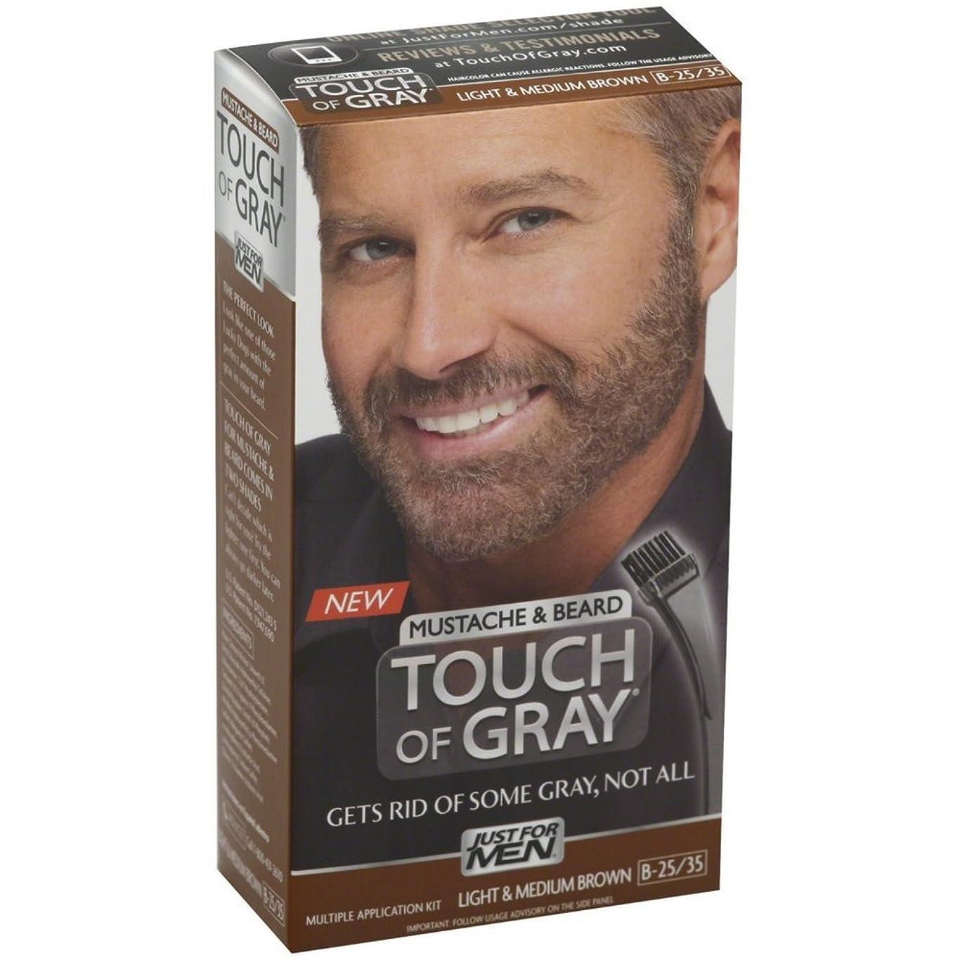 オーストラリア人販売計画タイトルJust for Men グレー髪の色、口ひげ&ビアードキット、ライト&ミディアムブラウンB-35分の25、1 Eaは(5パック)の感触 5パック