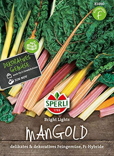 81460 Sperli Premium Mangold Samen Bright Lights | Zart | Wohlschmeckend | Mangold Saatgut | Mangold Saat
