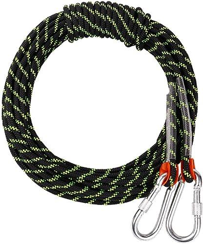 LYM-Rope Corde d'escalade, 60, 80, 100 Mètres, Diamètre 12 Mm Parachute De Secours Noir pour Extérieur (Taille   100m)