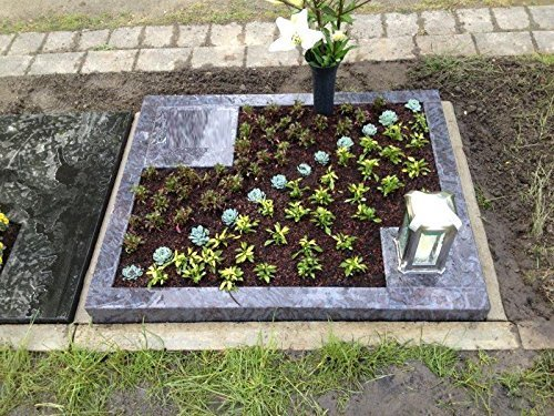 ABC Grabstein Orion Urnengrabstein Grabmal Granit Grabanlage Grabmal mit Grabumrandung 80cm x 80cm inklusive Grabplatte und Gravur