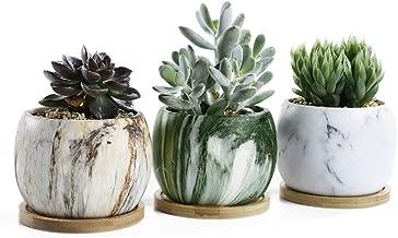 Best 3 succulent pots Reviews