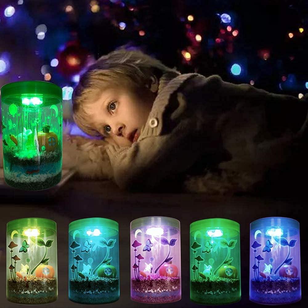 Waitahug Alternative dealer sold out Light up Terrarium Kit for Kids LED - with on Lid