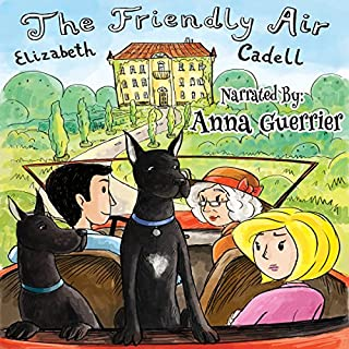 The Friendly Air audiobook cover art