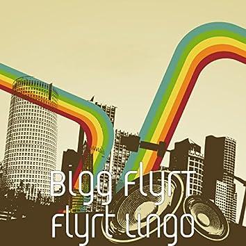 Flyrt Lingo
