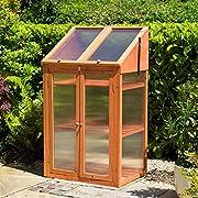 Kingfisher GHWOOD Gewächshaus aus aus Holz, transparent, Einheitsgröße
