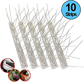 Bird Spikes for Pigeons Small Birds Cat,Anti Bird Spikes Stainless Steel Bird Deterrent Spikes-Cover 8 Feet (10 Pack)