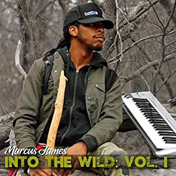 Sounds of Solitude: Into the Wild, Vol. 1